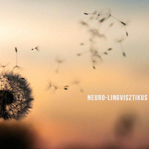 NLP-neuro-lingvisztikus-programozás-S-Toth-Marta-Lineo-International-Consulting
